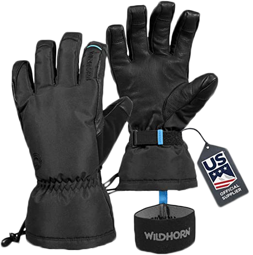 Wildhorn Tolcat Ski Gloves Unisex Waterproof Breathable Thinsulate Insulated Touchscreen Compatible Snow Gloves with Nose and Google Wipe